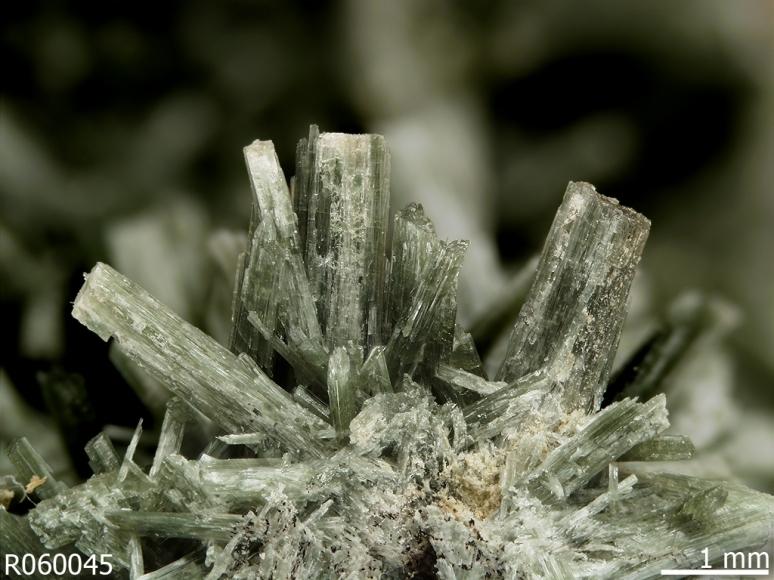 actinolit